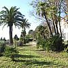 Jardin de la Villa Brignac